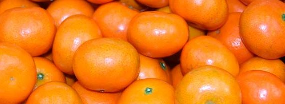 Canned mandarin processing line