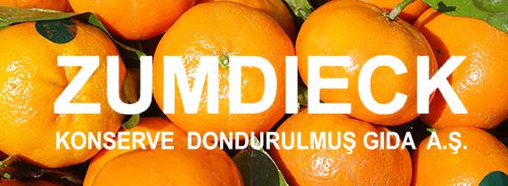 7 Líneas completas de procesamiento de mandarinas en conserva